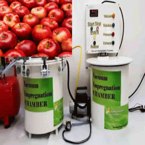 Vacuum Impregnation to modify physico chemical properties and sensory attributes of apples cv. Granny Smith (1 cm cubes) strawberries (cut in halves) and raspberries