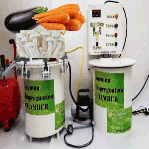 Vacuum Impregnation to modify physico chemical properties and sensory attributes of eggplant, carrot, oyster mushroom