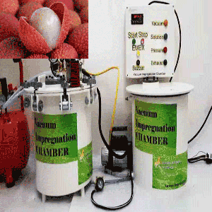 Vacuum Impregnation to modify physico chemical properties and sensory attributes of litchi cv. Rose
