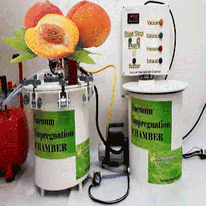 Vacuum Impregnation to modify physico chemical properties and sensory attributes of peaches (cut in halves)