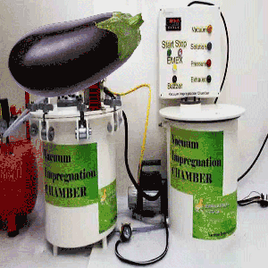 vacuum impregnation to modify health-promoting properties of eggplant fruits andorange peel