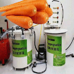 vacuum impregnation to modify health-promoting properties of endive, cauliflower, broccoli, carrots