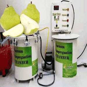 vacuum impregnation to modify health-promoting properties of fresh-cut pears cv