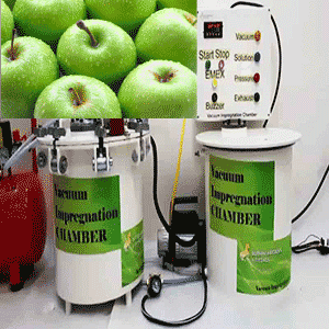vacuum impregnation to modify health-promoting properties of green apples cv. Orin (apple cubes)